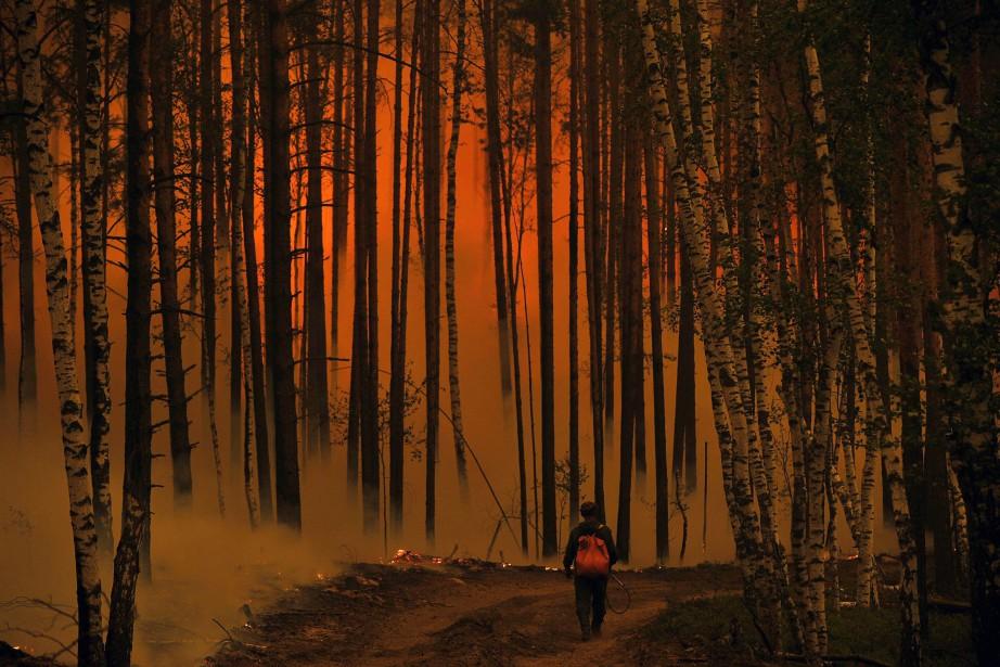 «La chaleur et la sécheresse qui règnent depuis... (PHOTO ARCHIVES AFP)