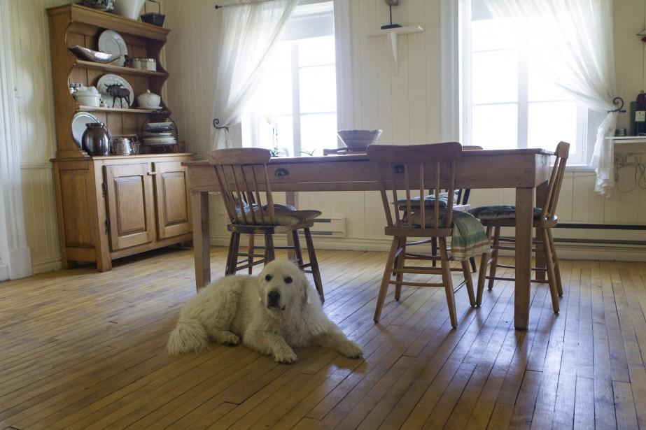 La maison et le domaine qui accueillent l'Azulée datent de 1844. Louise Vidricaire et son amoureux y habitent avec leur chienne Snow. (Le Soleil, Caroline Grégoire)