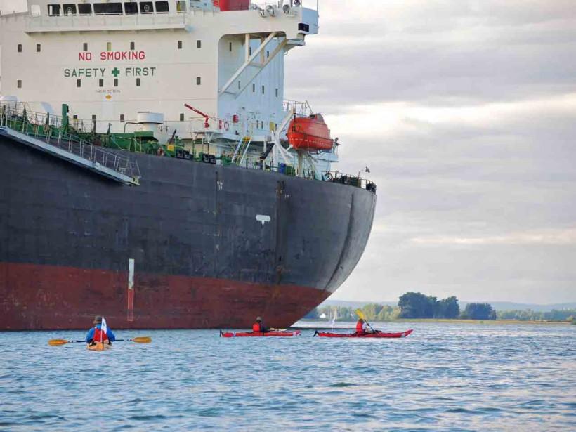 Au quotidien, les kayakistes ont côtoyé les géants du Saint-Laurent. (Jean-Sébastien Massicotte, collaboration spéciale)