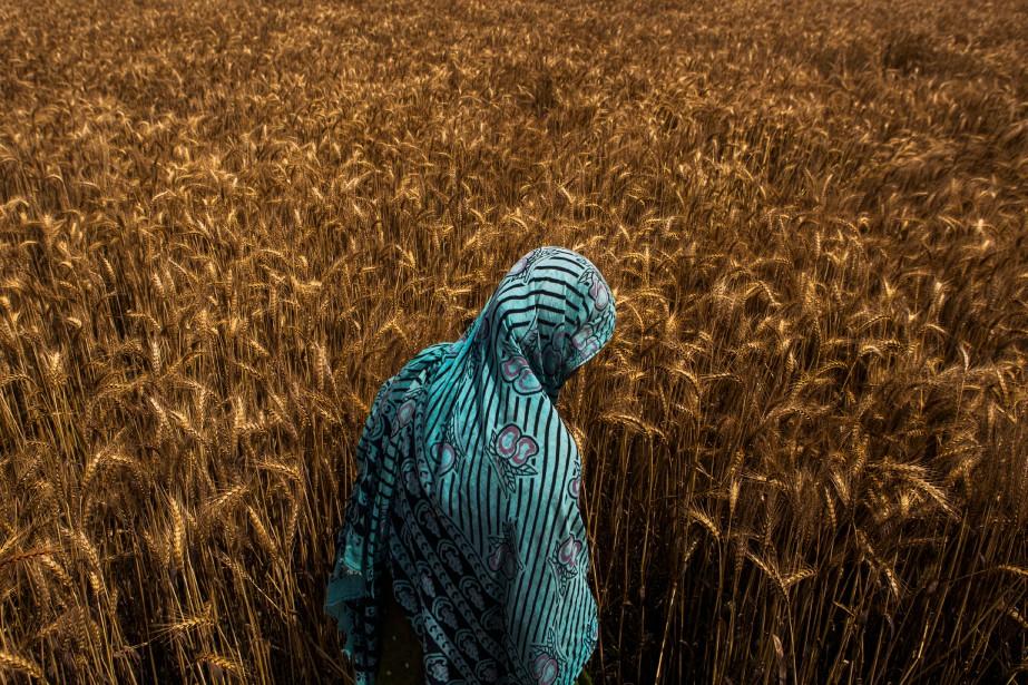 L'OCDE prévoit que le produit intérieur brut de... (Photo Prashanth Vishwanathanan/Bloomberg)