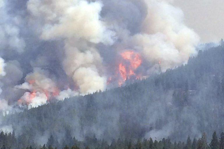 Un feu de forêt dans l'État de Washington.... (PHOTO AGENCE FRANCE-PRESSE)