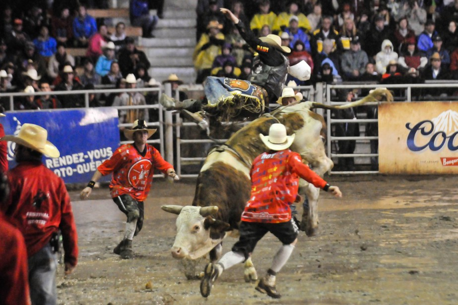Les cowboys devaient se battre à la fois contre des animaux et les affres de Dame Nature dimanche soir. (Photo: Émilie O'Connor, Le Nouvelliste)
