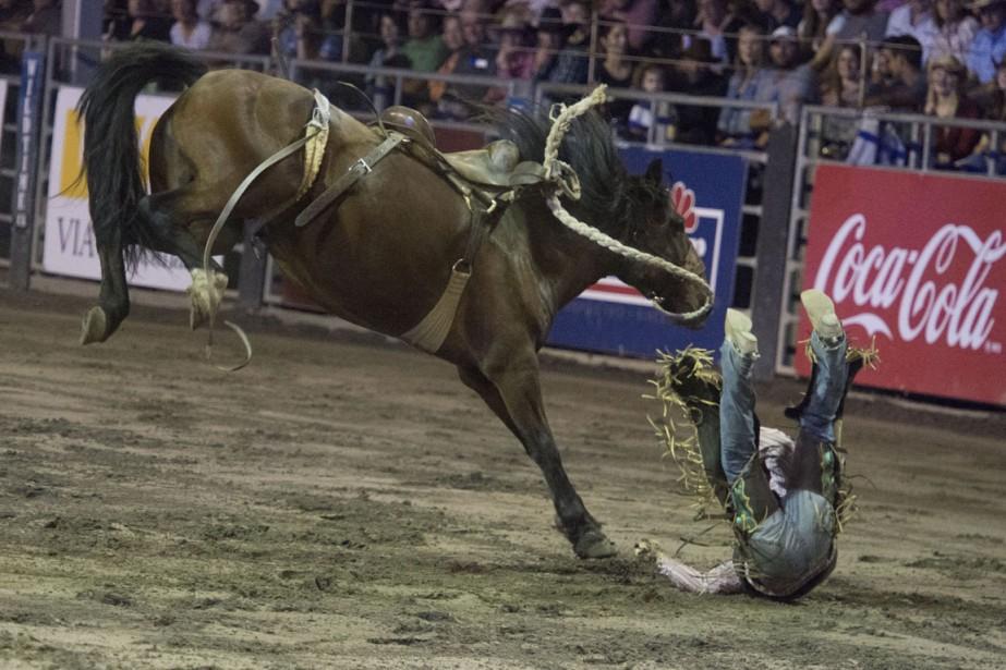 Tant les cowboys que les chevaux en ont mis plein la vue aux 6000 spectateurs réunis aux grandes estrades jeudi soir au Festival western de Saint-Tite. (Photo: Stéphane Lessard, Le Nouvelliste)