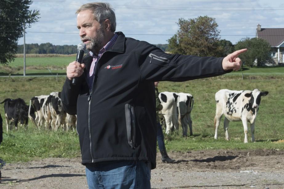 Thomas Mulcair visite une ferme laitière alors que le Partenariat transpacifique est au cœur du débat. (La Presse Canadienne)