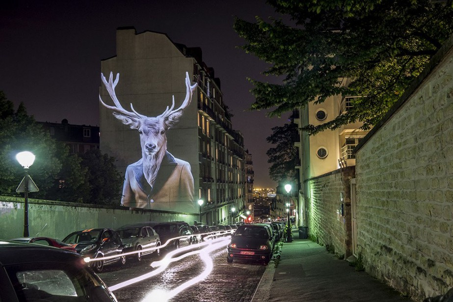 Le cerf de Becquerel... (PHOTO FOURNIE PAR JULIEN NONNON)