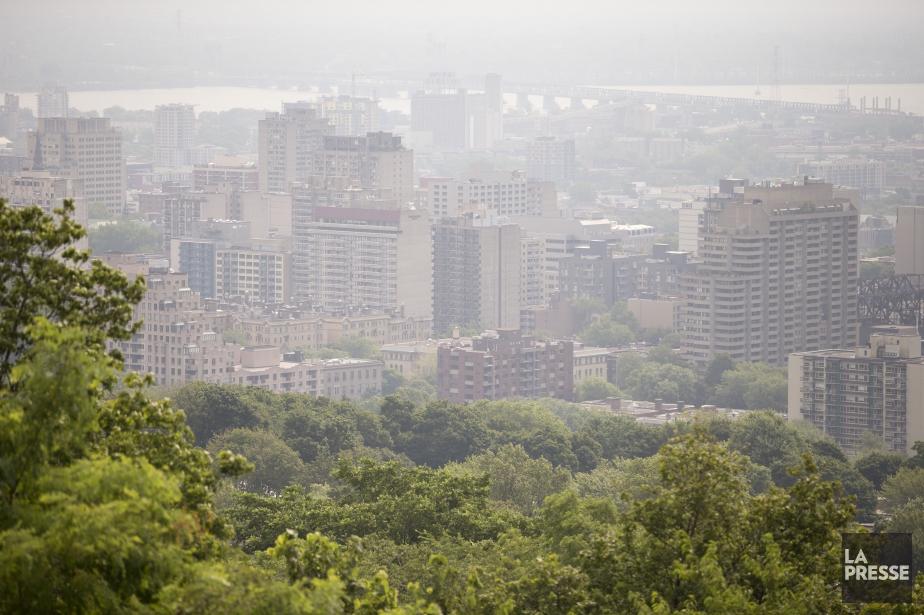 La Société de transport de Montréal... (PHOTO DAVID BOILY, ARCHIVES LA PRESSE)