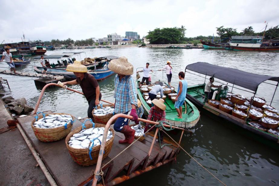 Des pêcheurs chinois déchargent leur bateau à leur... (PHOTO ARCHIVES AFP)