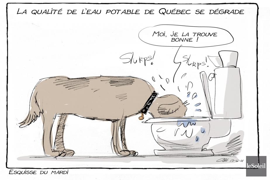 Caricature du 1er décembre | 30 novembre 2015