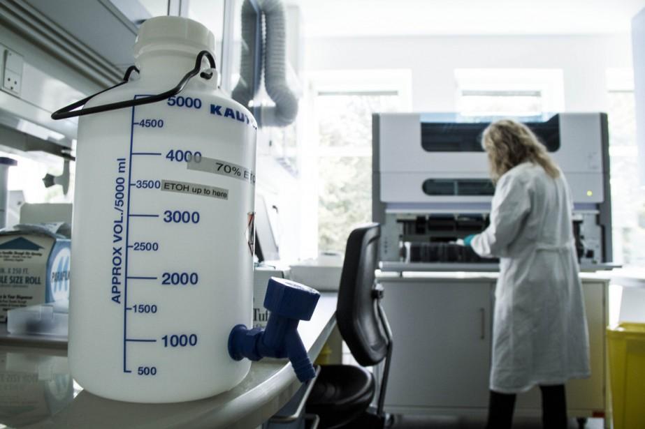 Le scientifique en chef, Rémi Quirion, dresse un... (PHOTO FREYA INGRID MORALES, ARCHIVES BLOOMBERG)