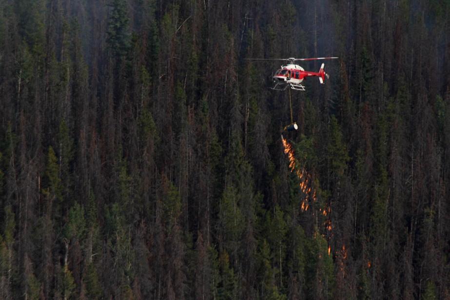 Les incendies de forêt dans les parcs nationaux... (Photo La Presse Canadienne)