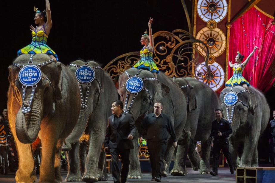 Les cirques de Feld existent depuis 145 ans... (PHOTO ANDREW CABALLERO-REYNOLDS, ARCHIVES AFP)