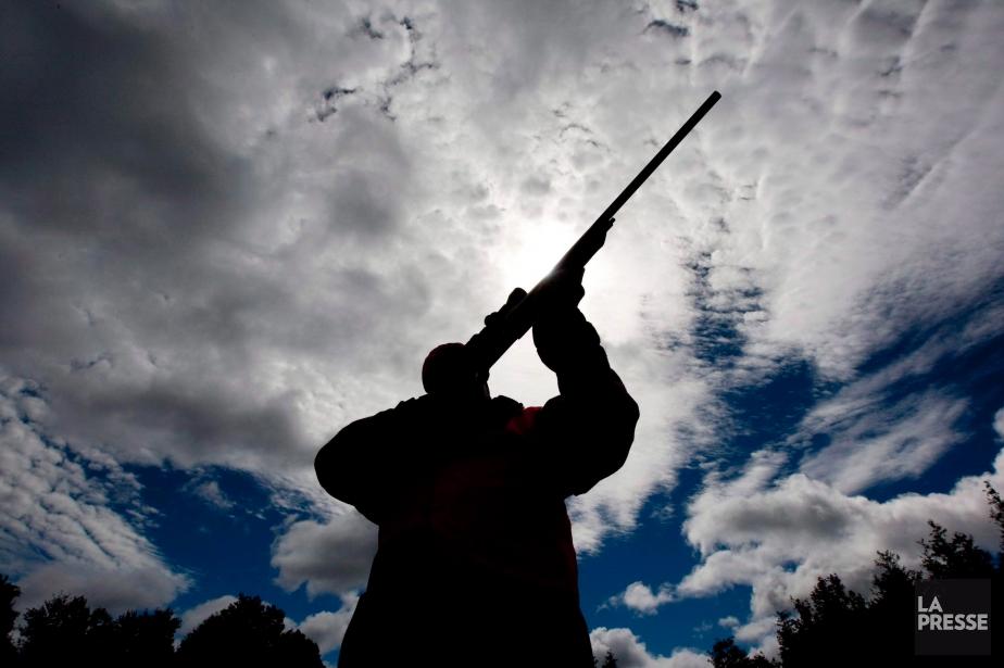 Il y aurait près de 1,7 million d'armes... (Photo archives La Presse Canadienne)