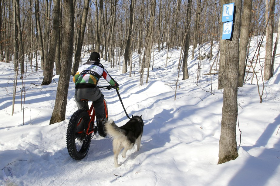 Pour une première fois cette année, on peut rouler en vélo d'hiver sur certains sentiers de raquette du parc de la Gatineau. (Patrick Woodbury, LeDroit)