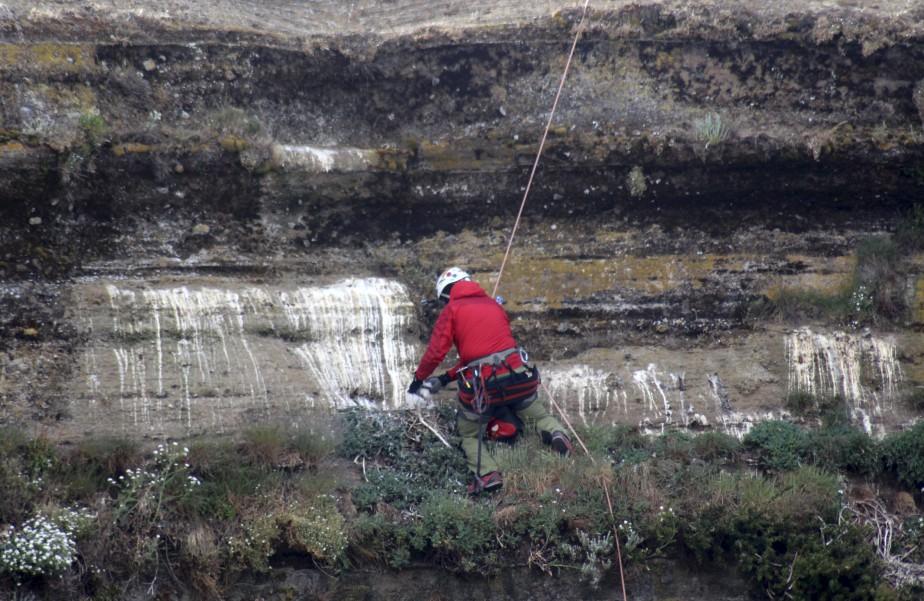 Le faucun a été réintroduit en Patagonie en décembre, donnant lieu à une nouvelle opération compliquée: deux alpinistes ont déposé le poussin sur un nid déjà occupé par d'autres petits, à flanc de montagne, à 30 mètres d'altitude. (Photo Service de protection des animaux chiliens)