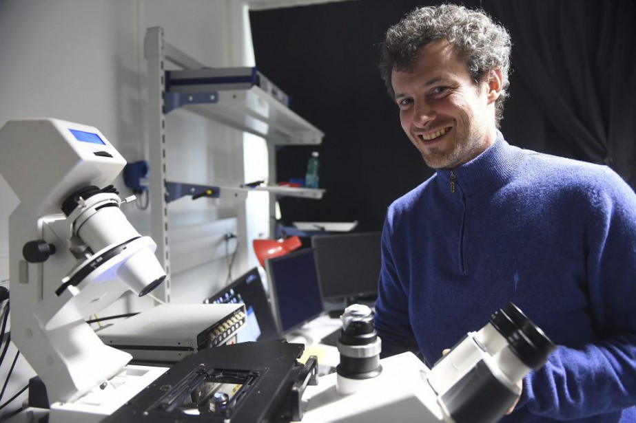 Aurélien Bancaud, chargé de recherche au CNRS.... (PHOTO ERIC CABANIS, AGENCE FRANCE-PRESSE)