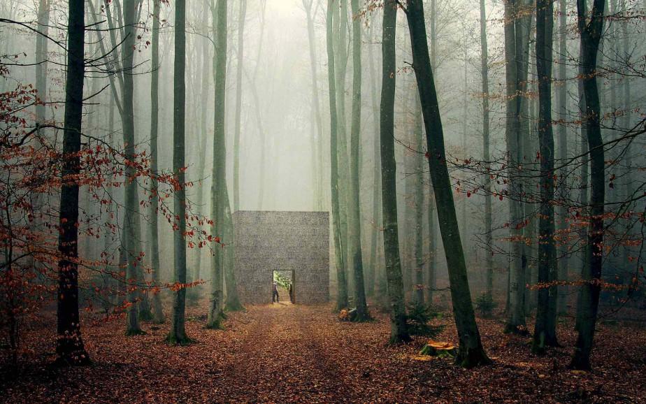 <em>Le caveau</em>, de Christian Poules, de Bâle (Suisse).Un plan de croissance végétale est blotti dans l'intimité d'un caveau. La lumière qui filtre à travers les pierres crée des ombres. La chambre laisse place à la réflexion. C'est un abri pour la méditation. La beauté de ce jardin se trouve dans sa grande simplicité et dans la confrontation qu'il crée entre la matière, la lumière, le temps et l'espace. ()