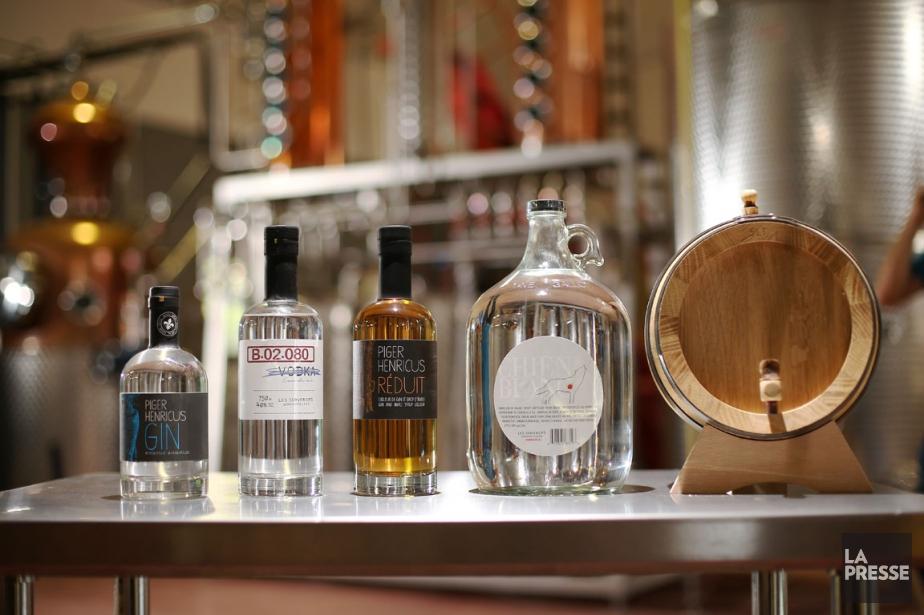 En connaissance de cause, les Subversifs (gin Piger... (PHOTO MARTIN CHAMBERLAND, LA PRESSE)