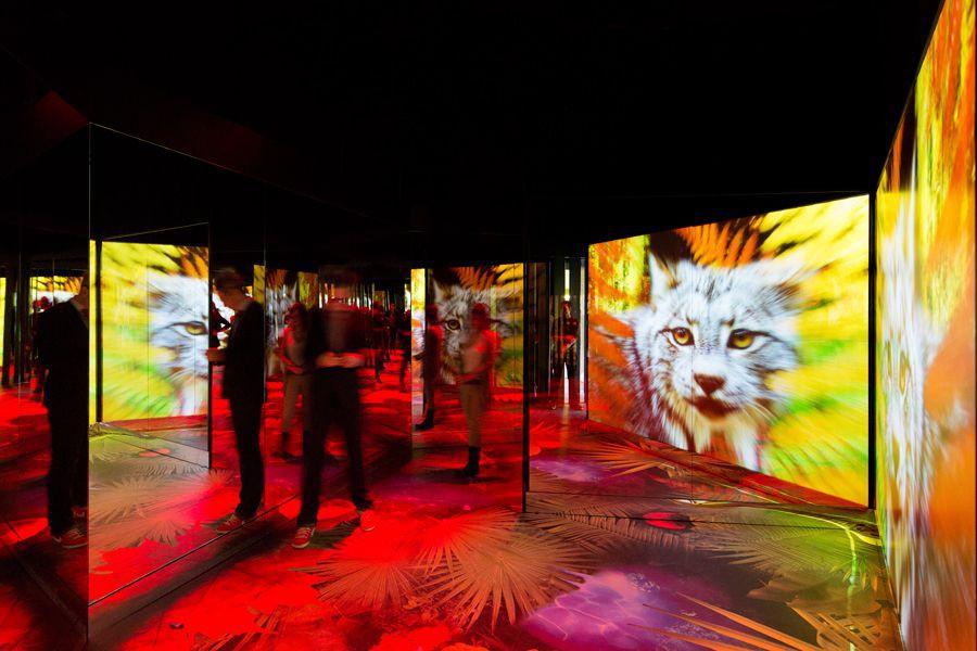 Biorama, une création de Moment Factory.... (PHOTO FOURNIE PAR MOMENT FACTORY)