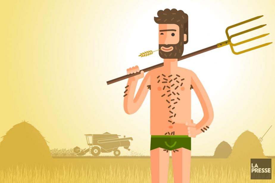 La virilité passe aujourd'hui par une savante gestion... (ILLUSTRATION DAVID LAMBERT, LA PRESSE)