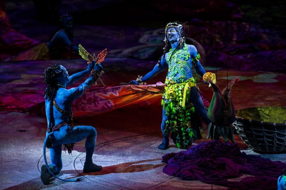 Les représentations du spectacle OVO du Cirque du... (photo olivier pontbriand, archives la presse)