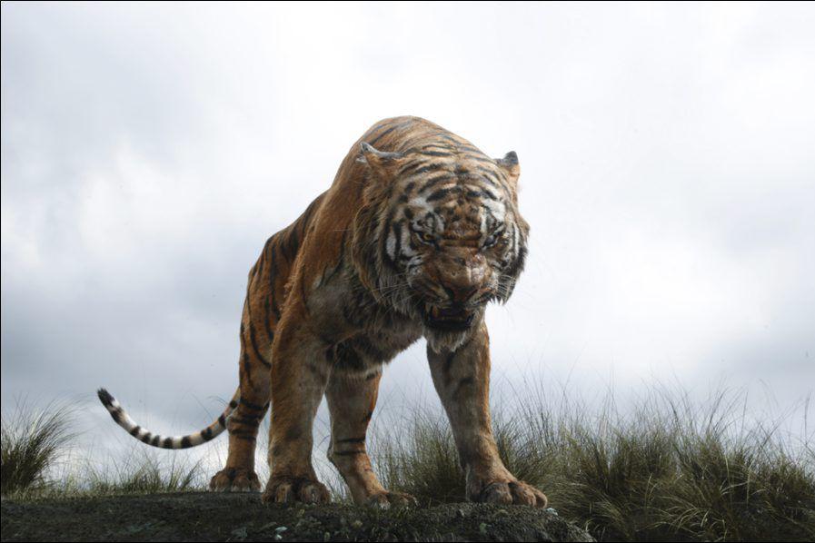 The Jungle Book... (PHOTO FOURNIE PAR DISNEY)