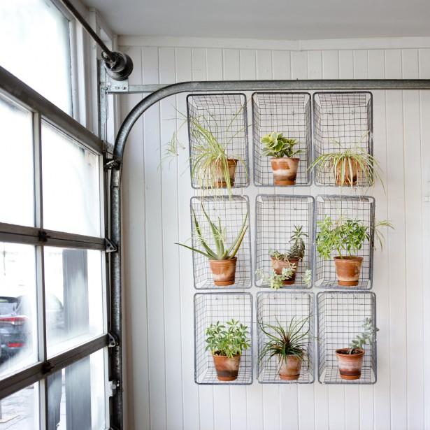 Mur végétal : de vieux paniers en treillis métallique reprennent vie sur ce mur en guise de supports à plantes. Cet aménagement, diffusé par plusieurs sur Instagram, se trouve au Café Sfouf. (PHOTO MARCO CAMPANOZZI, LA PRESSE)