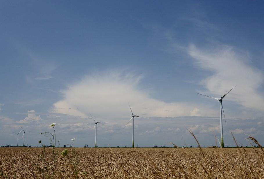Éoliennes du Groupe Boralex à Thames River (Pierre Charbonneau)