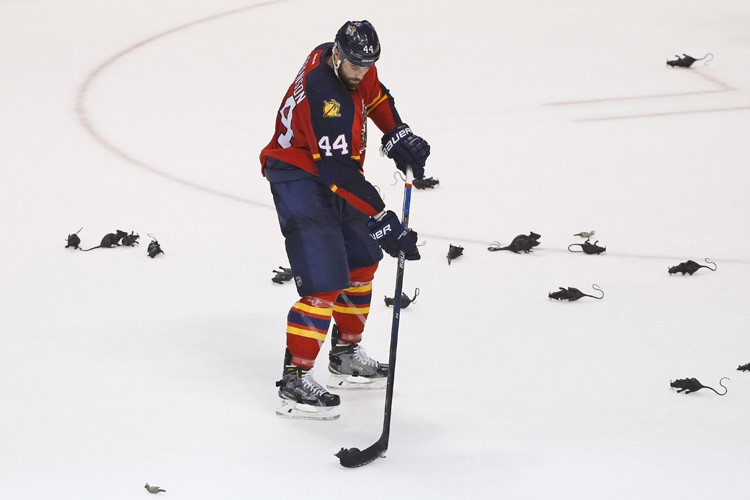 Erik Gudbranson... (PHOTO AP)