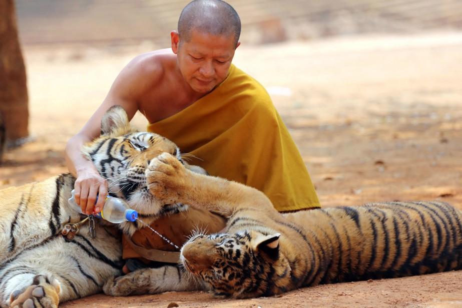 Le Wat Pha Luang Ta Bua, dans la... (PHOTO Sakchai Lalit, ARCHIVES AP)