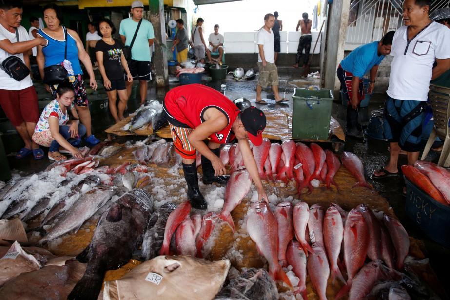 La surpêche, en raison de la demande grandissante... (Photo Erik De Castro, REUTERS)