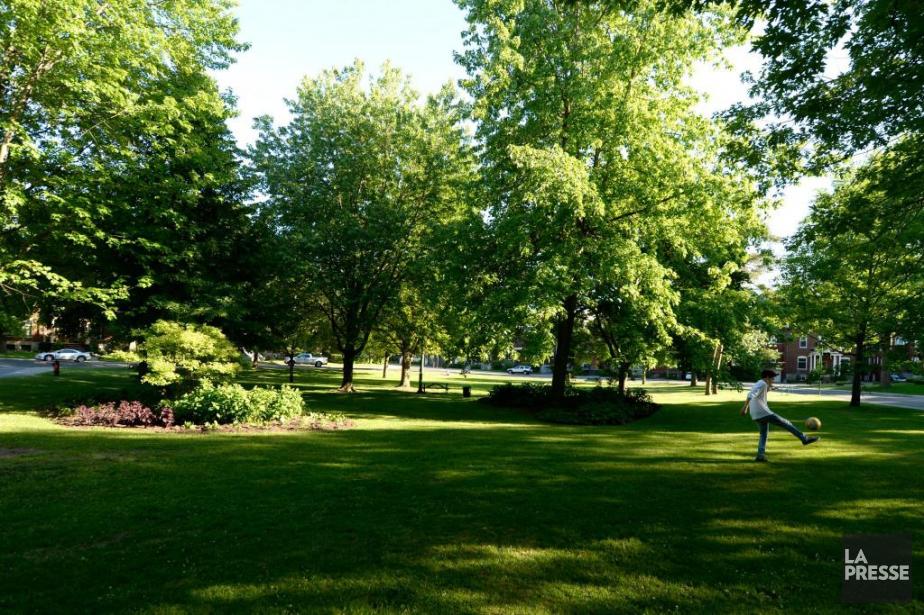 Le parc de Vimy, à Outremont, va changer... (PHOTO BERNARD BRAULT, ARCHIVES LA PRESSE)