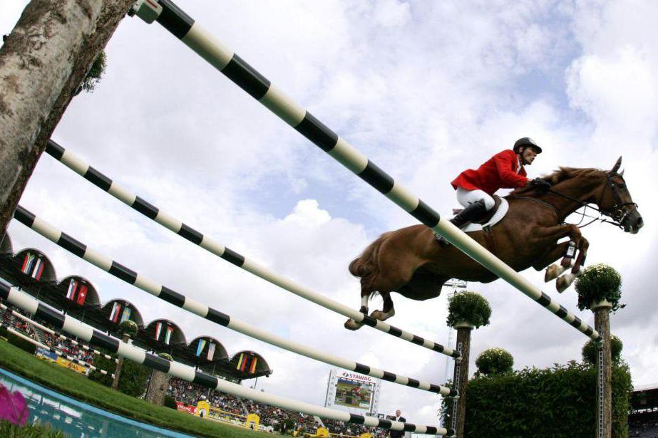 LesJeux équestres mondiaux doivent être présentés à Bromont... (ARCHIVES AFP)