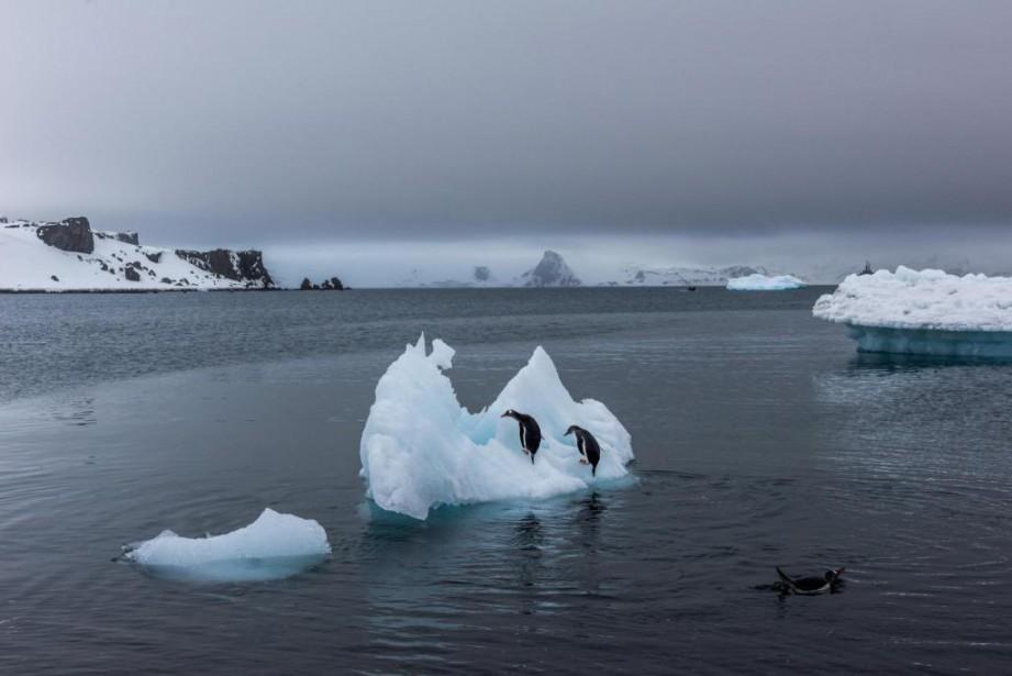 Le trou dans la couche d'ozone en Antarctique... (PHOTO ARCHIVES THE NEW YORK TIMES)