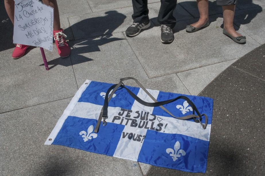 Une affiche «Je suis pitbull», inspirée du célèbre «Je suis Charlie». (Le Soleil, Alice Chiche)