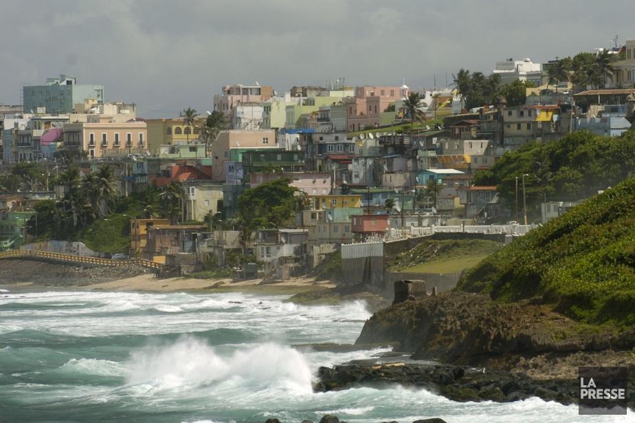 rapide propagation du zika porto rico am rique latine