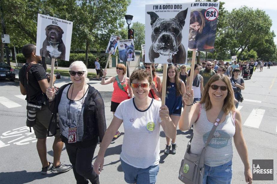 Des manifestants à Montréal, samedi.... (Photo Peter McCabe, La Presse Canadienne)