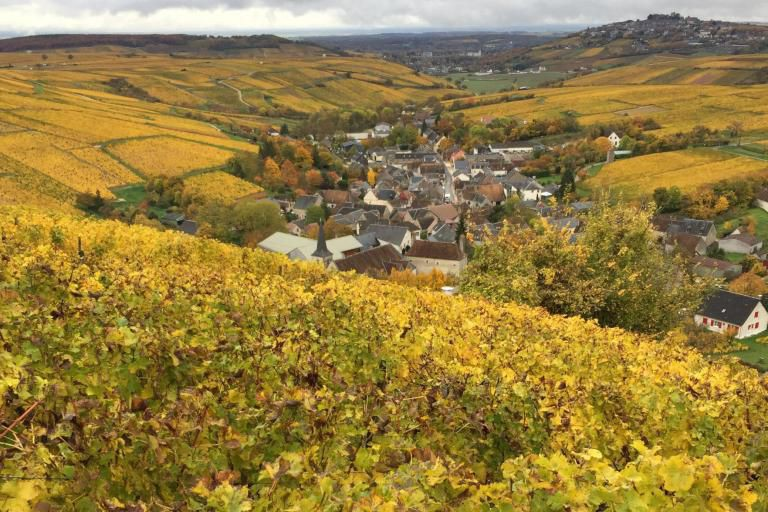 Visite du vignoble de François Cotat à Chavignol,... (Photo fournie par Jean Benoît Hinse)