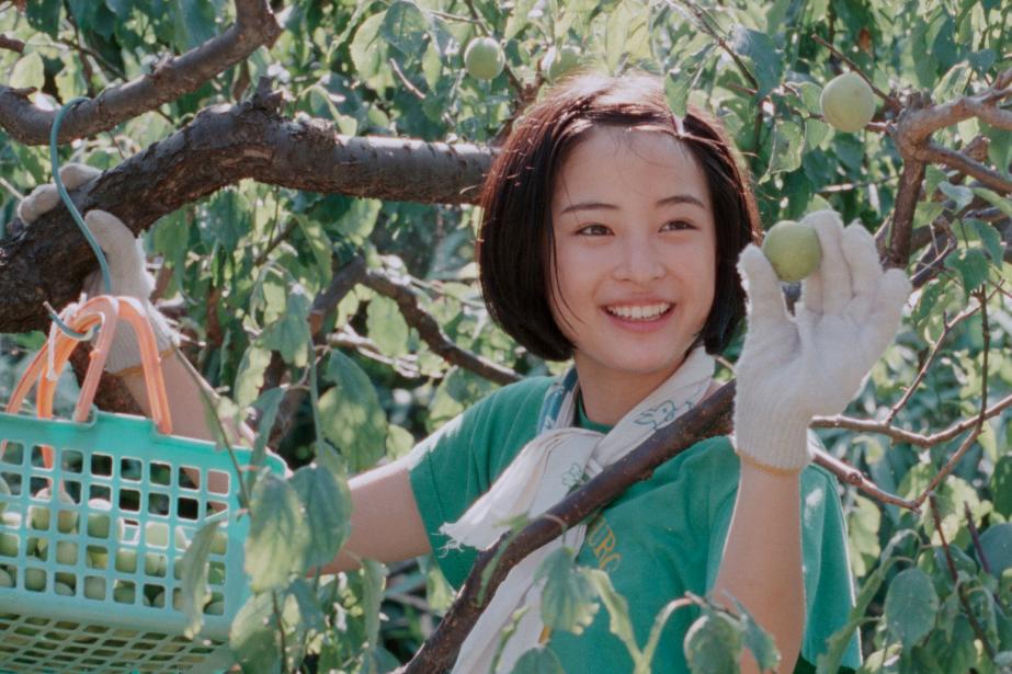 Notre petite soeur, deKore-eda Hirokazu... (Photo fournie par Métropole Films)