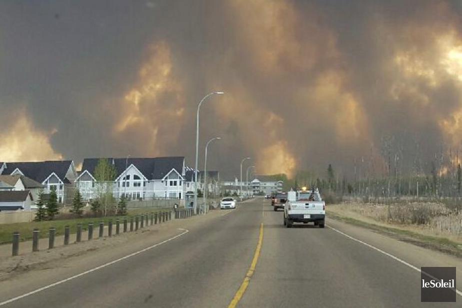 Les feux de forêt ont détruit en mai... (Photo archives PC)