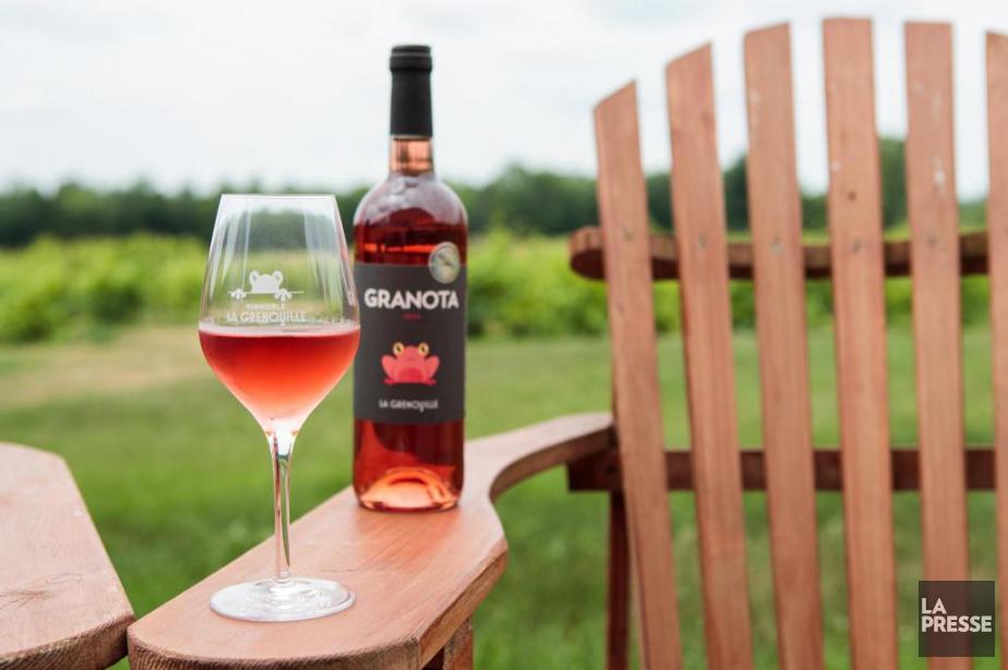 Le granota, un rosé sec produit par La... (PHOTO HUGO-SÉBASTIEN AUBERT, LA PRESSE)