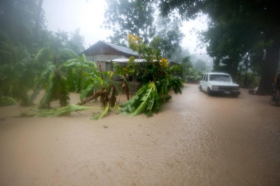 <em>Matthew</em> a inondé ce terrain, à Leogane, en Haïti. (Dieu Nalio Chery, AP)