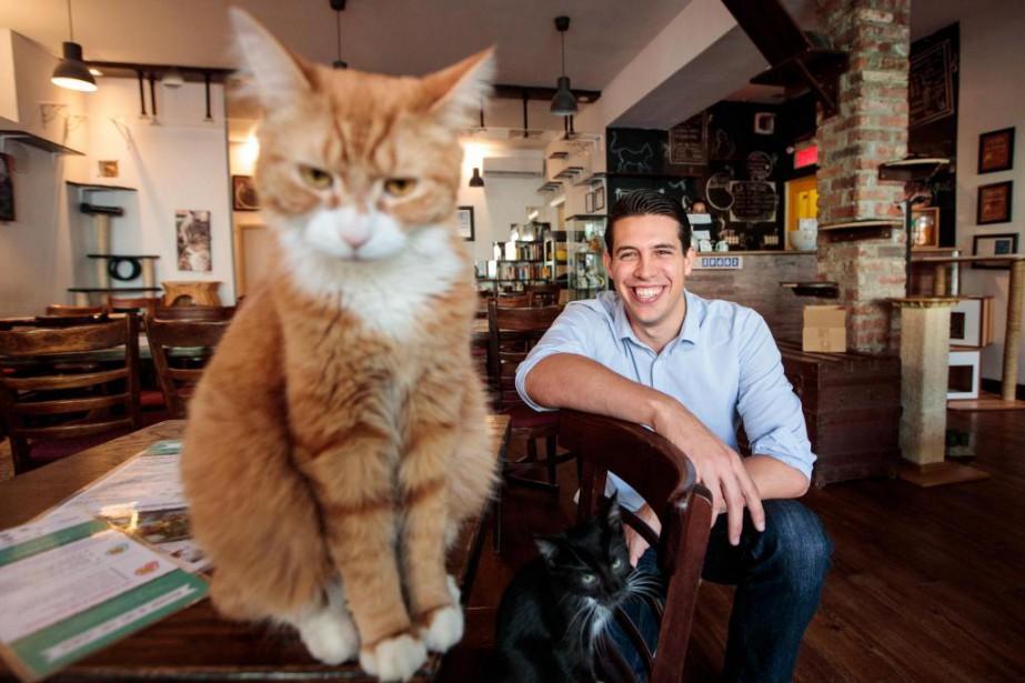 Geoffrey Da Costa et le chat Pumpkin, au... (PHOTO HUGO-SÉBASTIEN AUBERT, LA PRESSE)