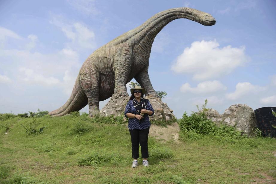 Un musée a été construit, mais jamais achevé. Seul le parc avec ses statues de dinosaures en fibre de verre, à taille réelle, peut éventuellement procurer au millier de personnes qui visitent le site chaque jour un petit frisson d'adrénaline. (PHOTO AFP, SAM PANTHAKY)