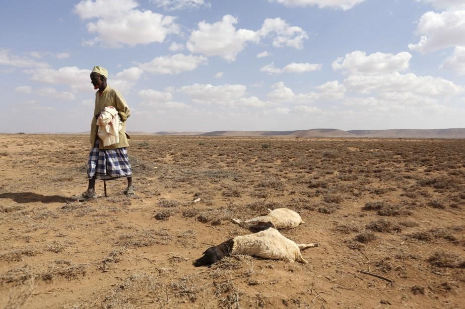 L'Afrique australe souffre depuis deux ans des effets... (photo Feisal Omar, archives REUTERS)