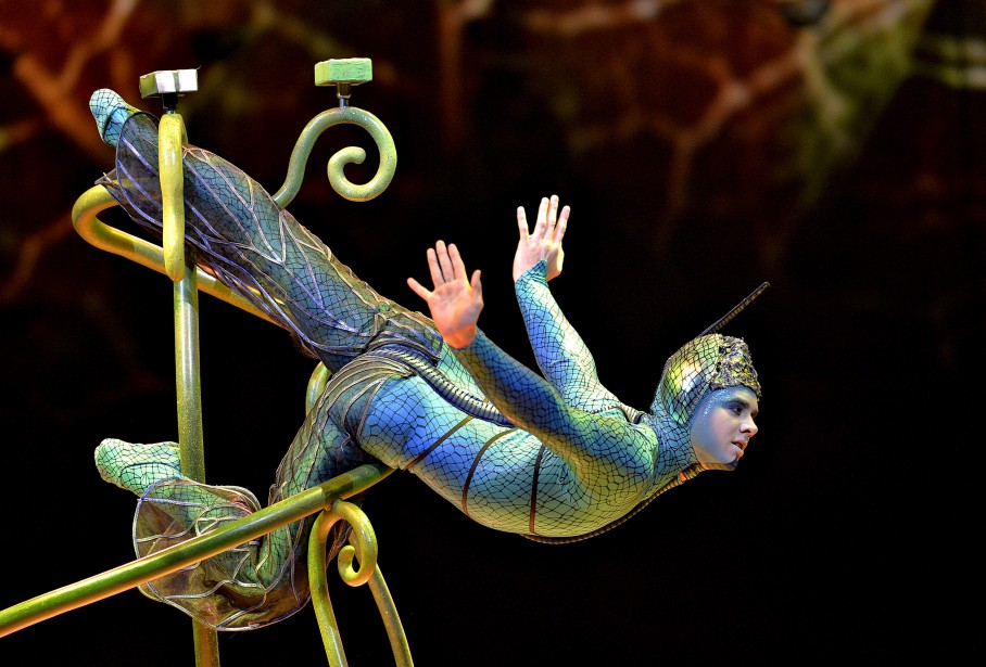 Première du spectacle <em>OVO</em> du Cirque du Soleil à l'amphithéâtre. (Le Soleil, Pascal Ratthé)