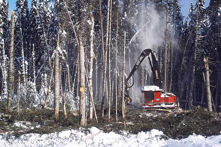 Déboisement du réservoir pour la Romaine-2.... (Photo tirée du site internet d'Hydro-Québec)