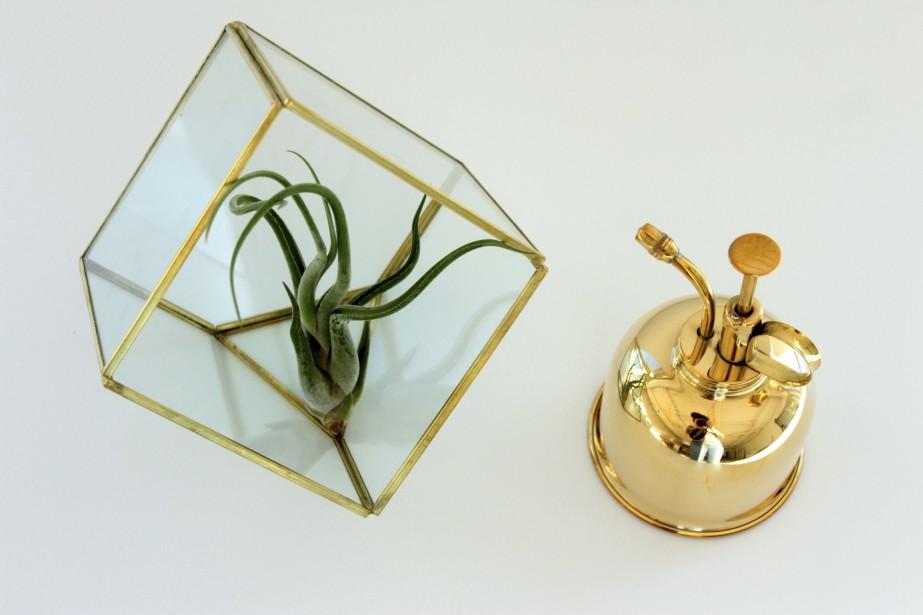 Ce petit terrarium géométrique se détaille une vingtaine de dollars, comme le brumisateur. (Fournie par Folia Design)