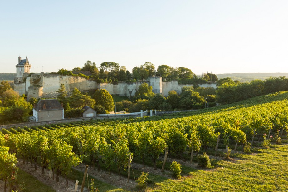 Une belle fin d'été a... (Photo tirée du site internet Vins de Val-de-Loire)