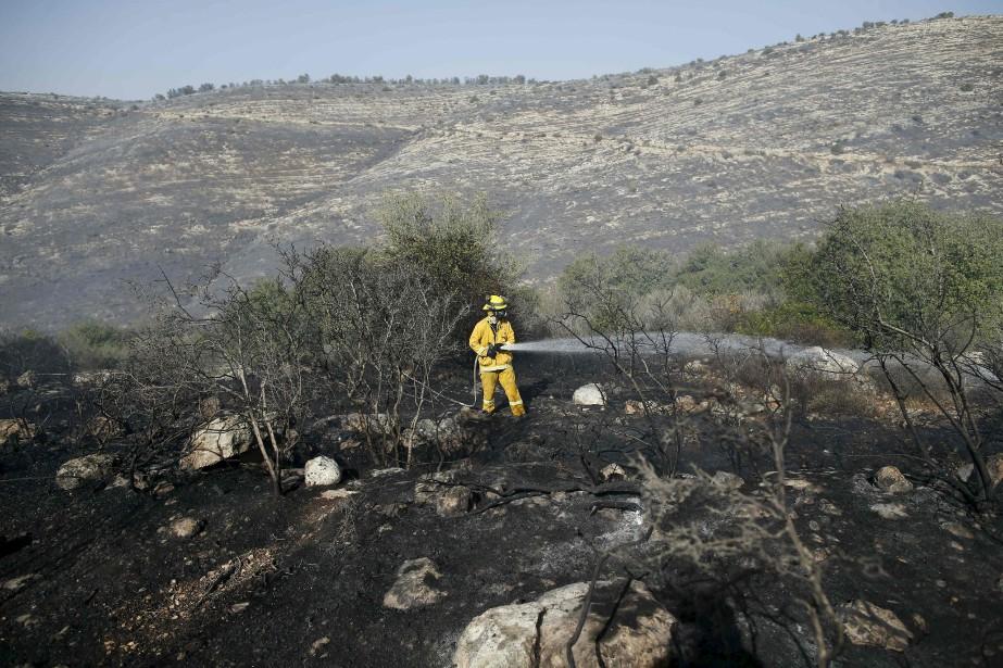 Les pompiers sont parvenus à maîtriser la majeure partie des différents brasiers disséminés dans le nord d'Israël et dans la région de Jérusalem. (AFP)
