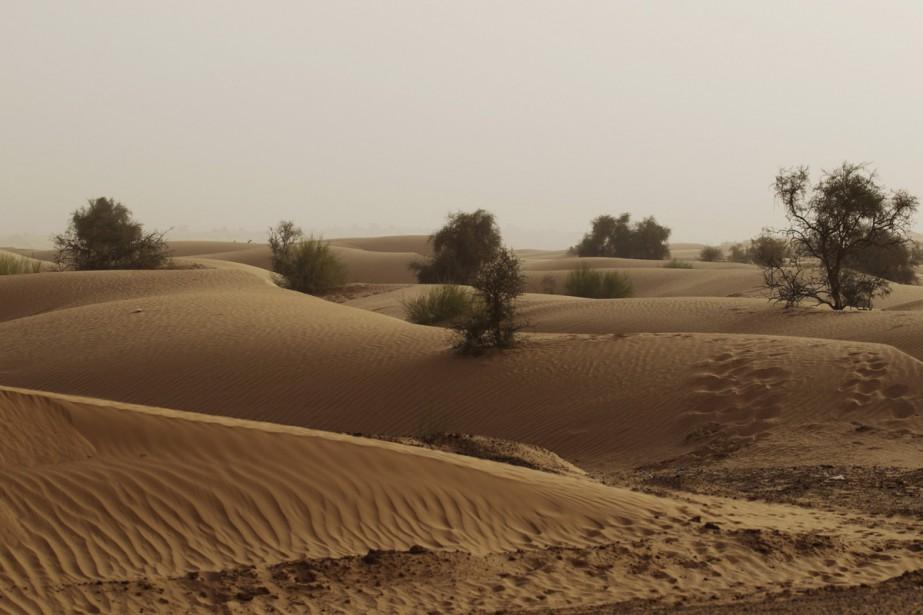 Le désert près de la ville d'Aleg, en... (Photo archives Reuters)